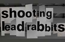 shooting-lead-rabbits2