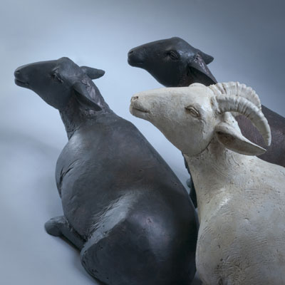 Osborne Studio Gallery Ann Campbell - Sheep1 and 2 plus Ram