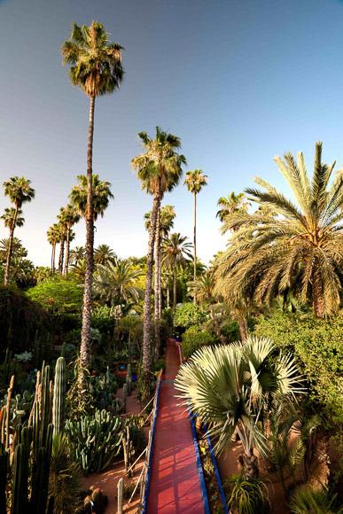 Yves Saint Laurent's Majorelle Gardens